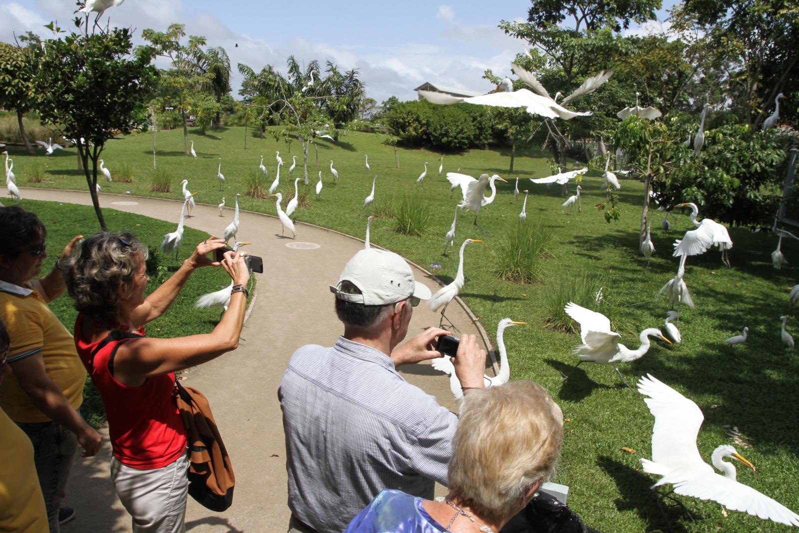 Cresce em 6,1% o fluxo do turismo internacional no Pará, em 2016