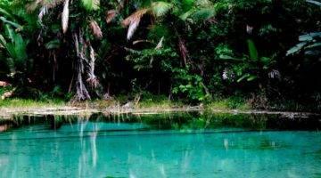 Lagoa Azul - Igarapé-Açu