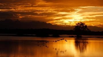 Natureza exuberante e cultura centenária colocam o Marajó na rota do turismo nacional e internacional
